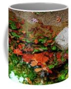 Autumn Mix Coffee Mug