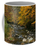 Autumn Mountain Stream Coffee Mug