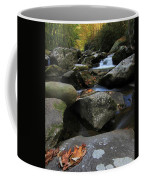 Autumn On Little River In The Smoky Mountains Coffee Mug