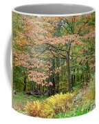 Autumn Paints A Dogwood And Ferns Coffee Mug