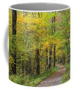 Autumn Path Coffee Mug