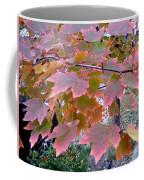 Autumn Pink 2 Coffee Mug