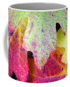 Autumn Rainbows Coffee Mug