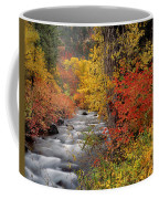 Autumn Rapids Coffee Mug