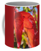 Autumn Reds Coffee Mug