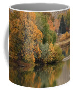 Autumn Reflection 41 Coffee Mug
