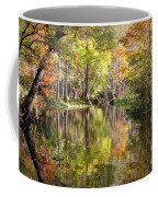 Autumn Reflection On Florida River Coffee Mug by Carol Groenen