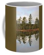 Autumn Reflector Coffee Mug