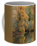 Autumn Riverbank Coffee Mug
