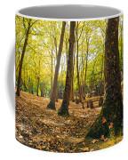 Autumn Scenery Coffee Mug by Carlos Caetano
