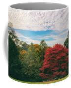 Autumn Skies Coffee Mug