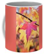 Autumn Still Coffee Mug