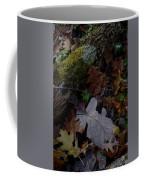 Autumn Still-life Coffee Mug