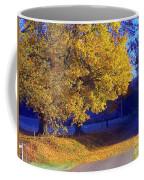 Autumn Sunrise In The Country Coffee Mug