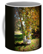 Autumn Sycamore Tree Coffee Mug