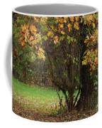 Autumn Tree 2 Coffee Mug