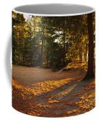 Autumn Trees Near Lake Coffee Mug