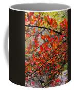 Autumn Trees Rock City Coffee Mug