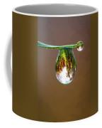 Autumn Vineyard In A Drop Of Due Coffee Mug