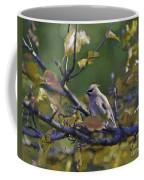 Autumn Waxwing 2 Coffee Mug