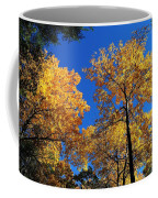 Autumn Yellow Foliage On Tall Trees Against A Blue Sky In Palermo Coffee Mug