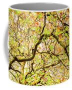 Autumnal Colours Coffee Mug