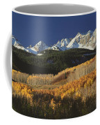 Autumnal View Of Aspen Trees And The Coffee Mug