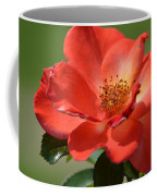 Autumn's Best Coffee Mug