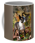 Autumn's Glamour Coffee Mug
