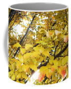 Autumns Gold Coffee Mug