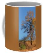 Autumn's Gold  - No 2 Coffee Mug