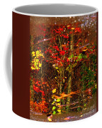 Autumns Looking Glass 2 Coffee Mug