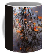 Autumns Looking Glass 3 Coffee Mug