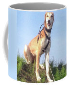 Ava-grace, Princess Of Arabia  #saluki Coffee Mug by John Edwards