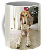 Ava On Her First Birthday #saluki Coffee Mug
