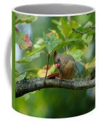 Available Shelter Coffee Mug