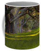 Avenue Of Oaks 2 St Simons Island Ga Coffee Mug