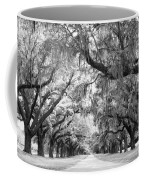Avenue Of Oaks Charleston South Carolina Coffee Mug