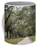 Avenue Of The Oaks Coffee Mug