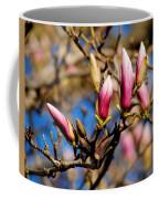 Awaking From Hibernation Coffee Mug