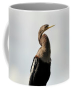 Awesome Anhinga Coffee Mug