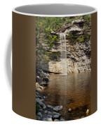 Awosting Falls Coffee Mug