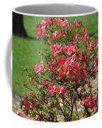 Azalea Bush 2  Coffee Mug