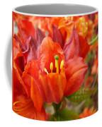 Azalea Flowers Art Prints Azaleas Gilcee Art Prints Baslee Troutman Coffee Mug