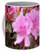 Azalea Garden Art Prints Pink Azaleas Flowers Baslee Troutman Coffee Mug