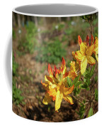 Azalea Greets The Morning Sun Coffee Mug