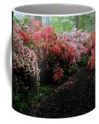 Azalea Pathway Coffee Mug