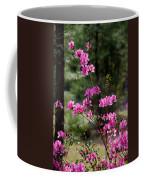 Azaleas II Coffee Mug