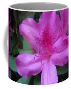 Azaleas IIi Coffee Mug