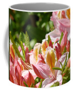 Azaleas Pink Orange Yellow Azalea Flowers 6 Summer Flowers Art Prints Baslee Troutman Coffee Mug